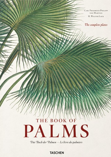 Fp - Book Of Palms, The