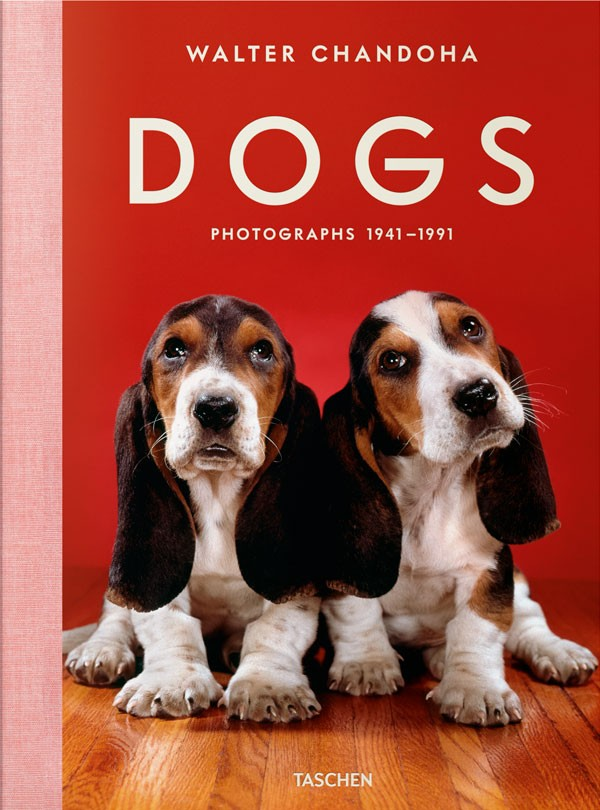 Dogs. Photographs 1941-1991