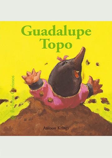 Bcu - Guadalupe Topo