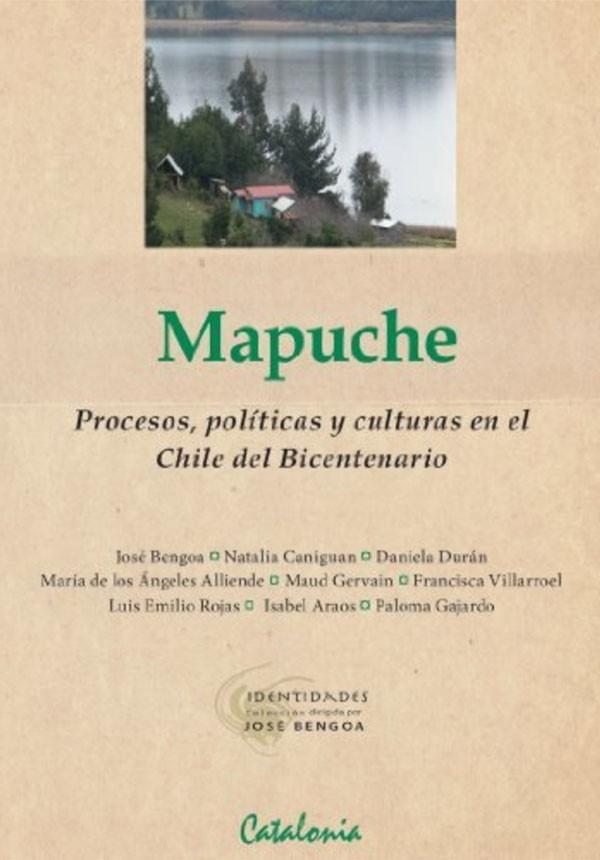 Mapuche. Procesos políticas...