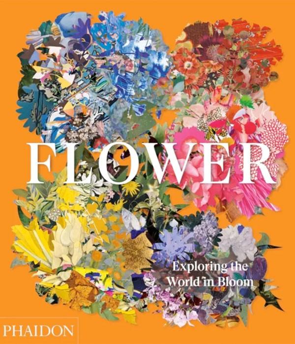 Flower. Exploring the world...