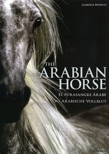 Arabian Horse, The