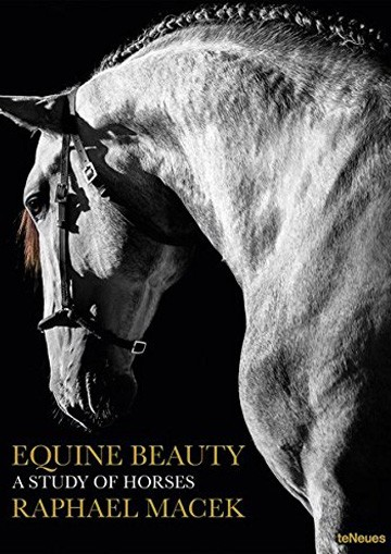 Equine Beauty. A Study Of...