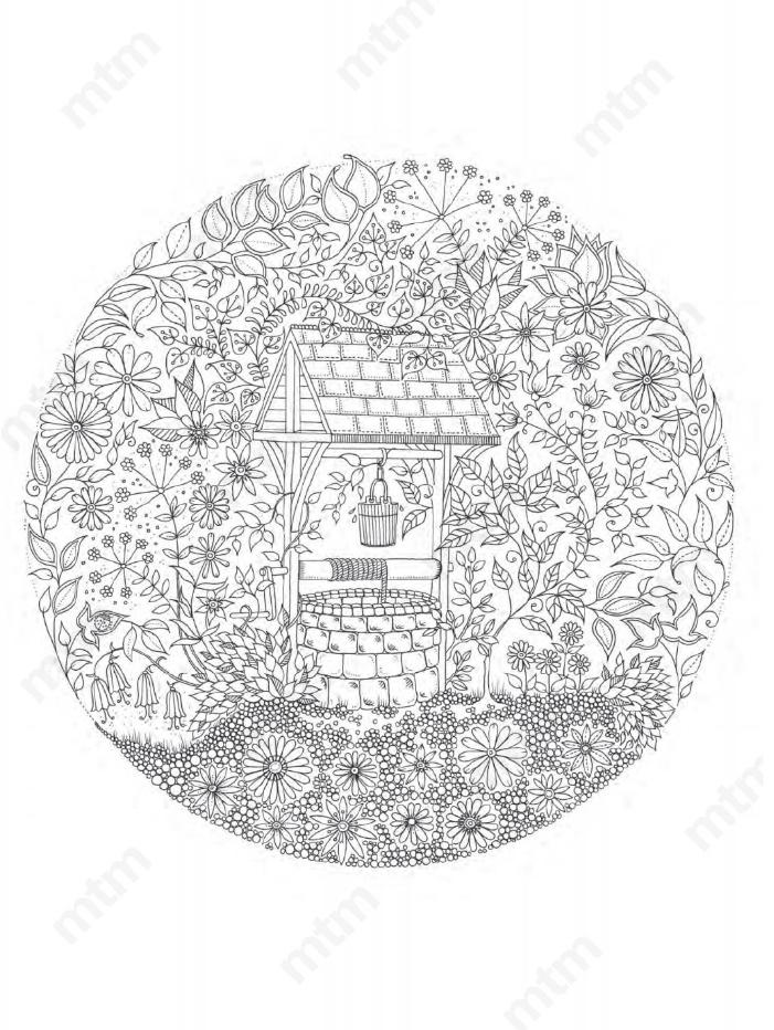 Contrapunto Cl Jardin Secreto Edicion Para Artistas Laminas