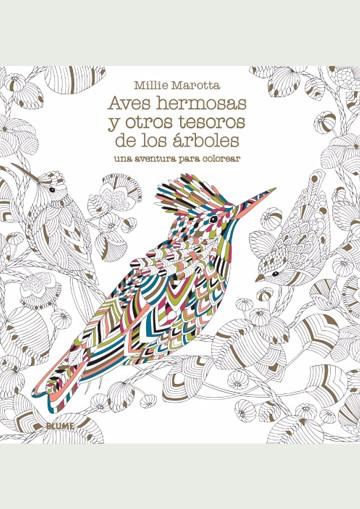 Aves Hermosas Y Otros...