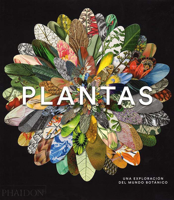 PLANTAS. UNA EXPLORACION...
