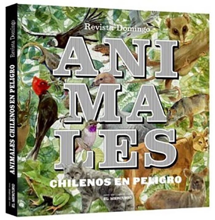 Animales Chilenos En Peligro