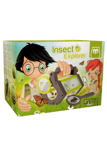 Kit insect explorer
