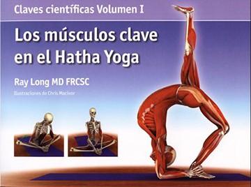 yoga - MUSCULOS CLAVE EN EL...