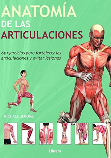 Anatomía de las articulaciones